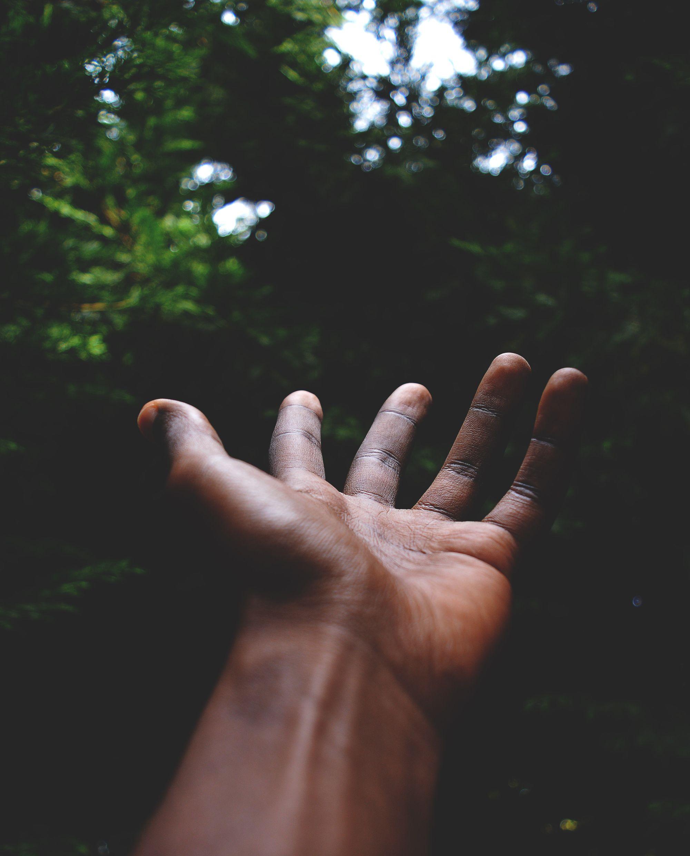 Igualdade Racial: um estudo sobre percepções, sentimentos e preconceitos ligados à cor de pele no Brasil